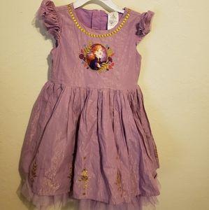 Disney Frizen Anna dress